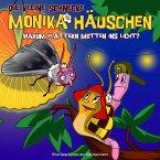 Warum flattern Motten ins Licht?, 1 Audio-CD / Die kleine Schnecke, Monika Häuschen, Audio-CDs Nr.17