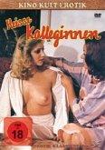 Heisse Kolleginnen - Kino Kult Erotik