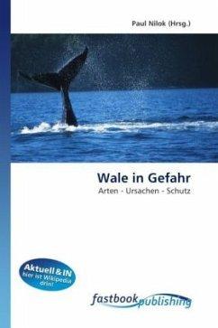 Wale in Gefahr