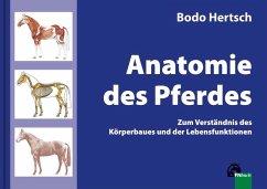 Anatomie des Pferdes - Hertsch, Bodo