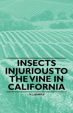 Insects Injurious to the Vine in California - Quayle, H. J.