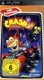 Crash: Tag Team Racing (PSP)