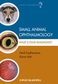Small Animal Ophthalmology: What's Your Diagnosis?