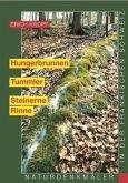 Hungerbrunnen - Tummler - Steinerne Rinne