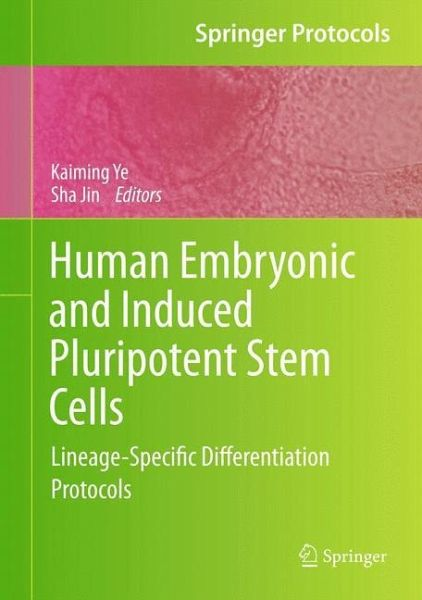 Human Embryonic and Induced Pluripotent Stem Cells ...