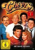 Cheers - Season 1 DVD-Box