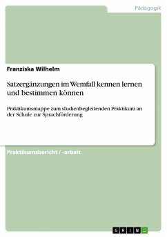 satzerg nzungen im wemfall kennen lernen und bestimmen k nnen von franziska wilhelm fachbuch. Black Bedroom Furniture Sets. Home Design Ideas