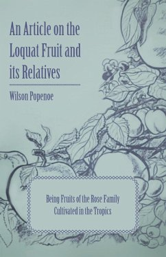 An Article on the Loquat Fruit and its Relatives - Being Fruits of the Rose Family Cultivated in the Tropics