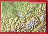 Reliefpostkarte Berner Oberland