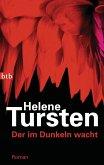 Der im Dunkeln wacht / Kriminalinspektorin Irene Huss Bd.9
