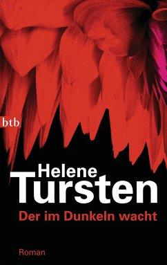 Der im Dunkeln wacht / Kriminalinspektorin Irene Huss Bd.9 - Tursten, Helene