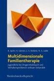 Multidimensionale Familientherapie
