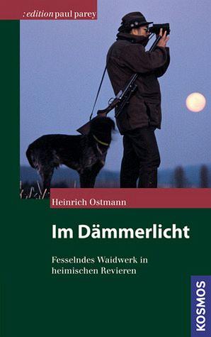 Im Dämmerlicht - Ostmann, Heinrich