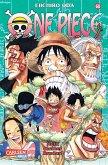 Mein kleiner Bruder! / One Piece Bd.60