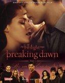 Biss zum Ende der Nacht / Die Twilight Saga - Breaking Dawn Teil 1