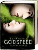 Die Reise beginnt / Godspeed Bd.1