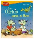 Die Olchis allein zu Haus / Die Olchis Bd.11