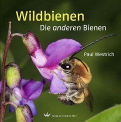 Wildbienen - Westrich, Paul