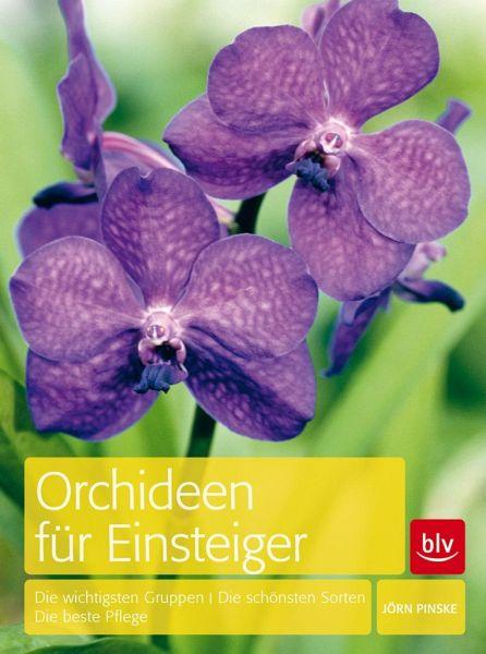 orchideen f r einsteiger von j rn pinske buch. Black Bedroom Furniture Sets. Home Design Ideas