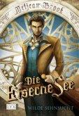 Wilde Sehnsucht / Die Eiserne See Bd.1