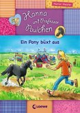 Ein Pony büxt aus / Hanna und Professor Paulchen Bd.6