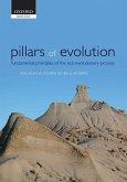 Pillars of Evolution: Fundamental Principles of the Eco-Evolutionary Process