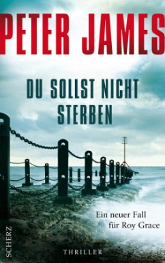 Du sollst nicht sterben / Roy Grace Bd.6 - James, Peter