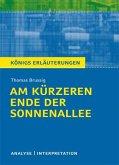 Am kürzeren Ende der Sonnenallee. Textanalyse und Interpretation zu Thomas Brussig