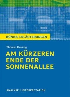 Am kürzeren Ende der Sonnenallee. Textanalyse und Interpretation zu Thomas Brussig - Brussig, Thomas