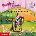 Finja und Flöckchen / Ponyhof Liliengrün Bd.9 (1 Audio-CD)