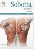 Sobotta Lernkarten Muskeln - Muskeln - mit Zugang zum Elsevier-Portal