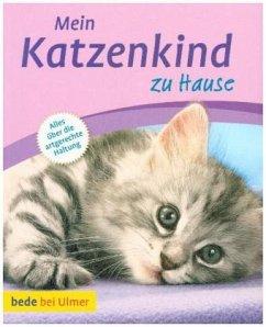 Mein Katzenkind zu Hause - Kurt, Aline