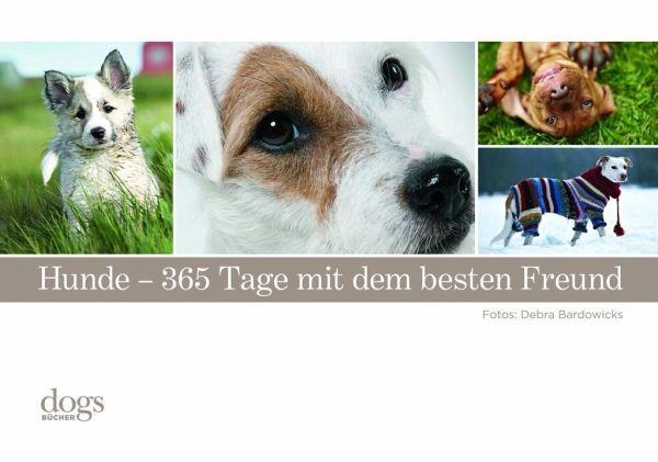Hunde. 365 Tage mit dem besten Freund - Bradowicks, Debra