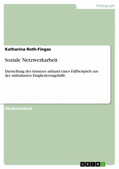 Soziale Netzwerkarbeit - Roth-Fingas, Katharina
