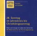 28. Sonntag im Jahreskreis bis Christkönigssonntag, 1 CD-ROM / Gottes Volk, Lesejahr B 2012 Nr.8