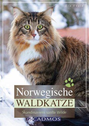 Norwegische Waldkatze - Ewald, Eva