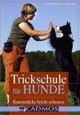 Trickschule für Hunde