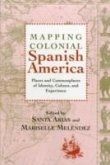 Mapping Colonial Spanish America: Places and Commonplaces of Identity, Culture, and Experience