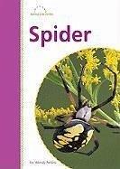 Spider - Perkins, Wendy