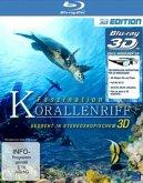 Faszination Korallenriff (Blu-ray 3D)
