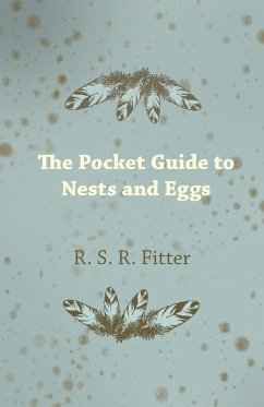 The Pocket Guide to Nests and Eggs - Fitter, R. S. R.