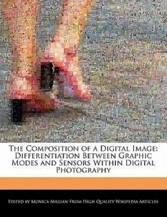 The Composition of a Digital Image: Differentiation Between Graphic Modes and Sensors Within Digital Photography - Millian, Monica
