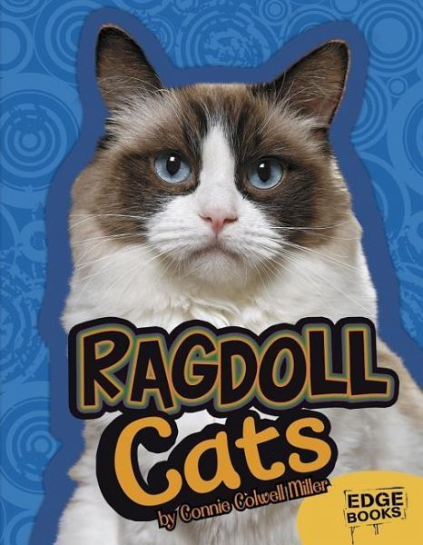 Ragdoll Cats Von Joanne Mattern Englisches Buch Bücherde