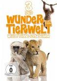 Wunder der Tierwelt - Wilde Tiere ganz zahm DVD-Box
