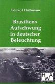 Brasiliens Aufschwung in deutscher Beleuchtung