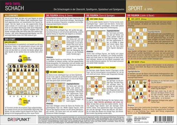 Schach Regeln