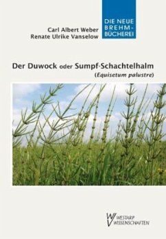 Der Duwock oder Sumpf-Schachtelhalm (Equisetum ...