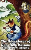 The Adventures of Unc' Billy Possum by Thornton Burgess, Fiction, Animals, Fantasy & Magic