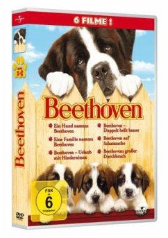 Beethoven - Teil 1-6 DVD-Box - Charles Grodin,Bonnie Hunt,Dean Jones