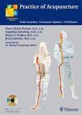 Practice of Acupuncture (eBook, PDF)